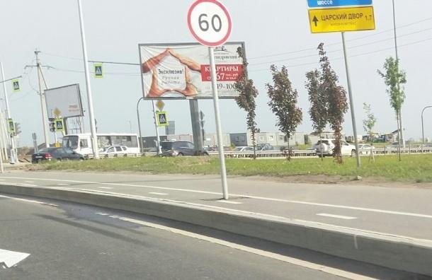 Знак ограничения скорости вкопали в центре велосипедной дорожки в Пушкине
