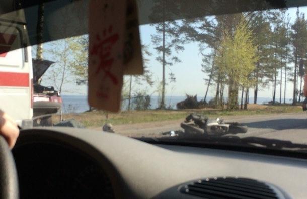 Мотоциклист погиб в ДТП на Приморском шоссе