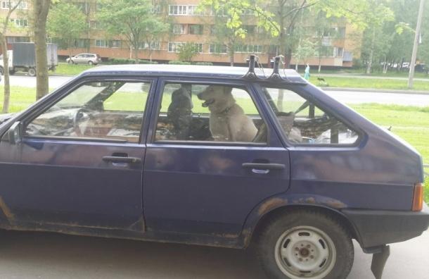 Очевидцы: пес третий день сидит запертый в машине на Кузнецова