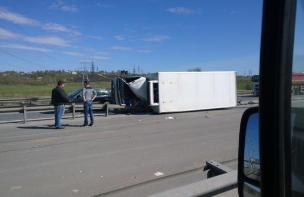 Водитель чудом выжил в жуткой аварии на КАД перед Парголово