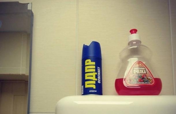 Воздух туалета в петербургском избиркоме освежает ЛДПР