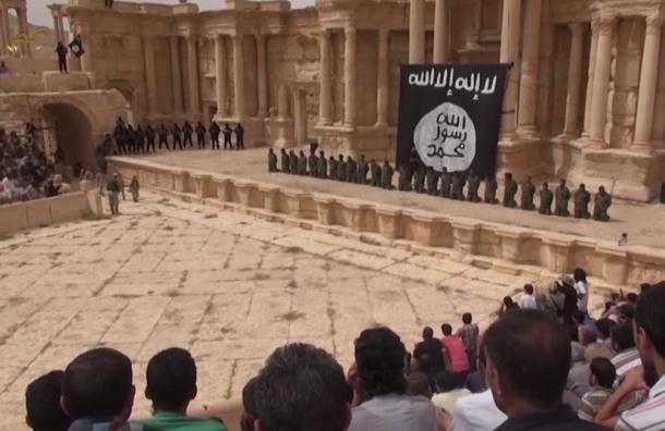 Оркестр Мариинки выступит в Пальмире на месте казни людей