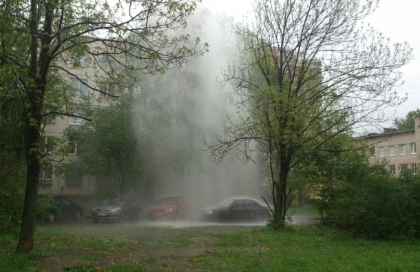 Фонтан кипятка вырвался на Товарищеском проспекте