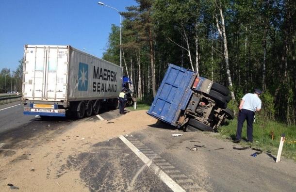 Два грузовика устроили бой тяжеловесов на Мурманском шоссе