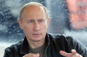 Деятельность Путина одобряют 82% жителей России