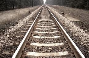 Поезд сбил женщину в Колпино