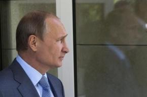 Работой Путина довольны 80% россиян