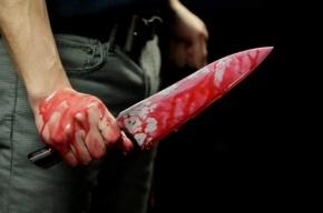 Подросток из Москвы зарезал 14-летнюю школьницу