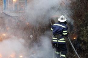 Неизвестный вертолет сбросил зажигательные снаряды возле резиденции Порошенко