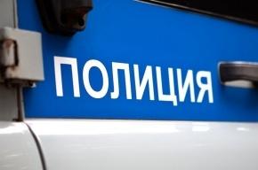 Петербургский Главк прокомментировал историю с изъятием 2-летней дочери