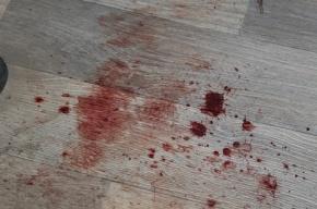 Житель Ленобласти сел на 9 лет за зверское убийство своей подруги