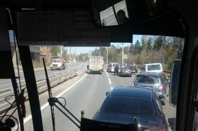 Километровая пробка собралась из-за аварии в Лисьем Носу