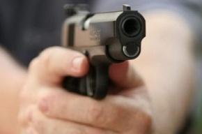 Житель Петербурга подстрелил свою жену на даче в Ленобласти