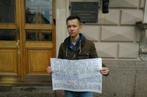 Депутатов просили спасти деревья Чёрной речки