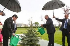 Два президента на встрече в Минске поливали ёлочку в дождь