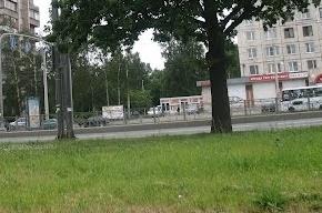 Молодой мужчина покончил с собой в парке больницы на Пискаревском проспекте