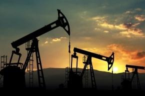 Стоимость нефти превысила 50 долларов за баррель