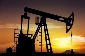 Дешевый доллар поднял нефть в цене