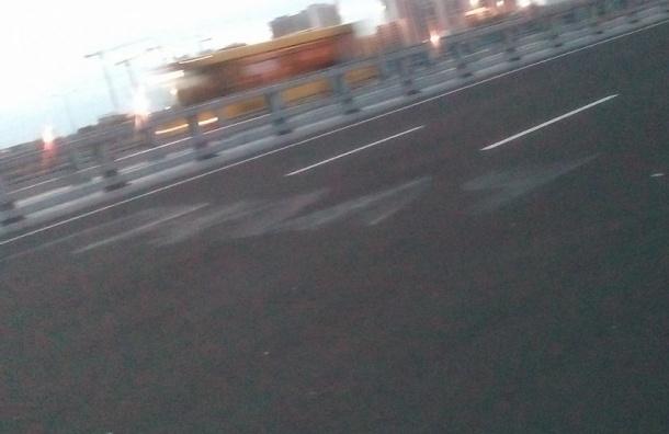 Напротив моста Кадырова появилась надпись «Палач»