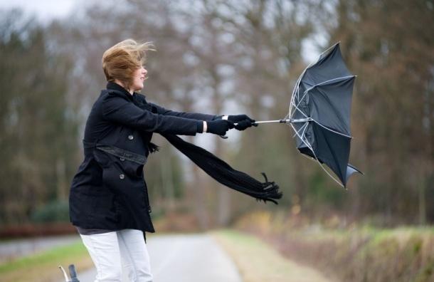 Штормовой ветер вновь обещают на выходных