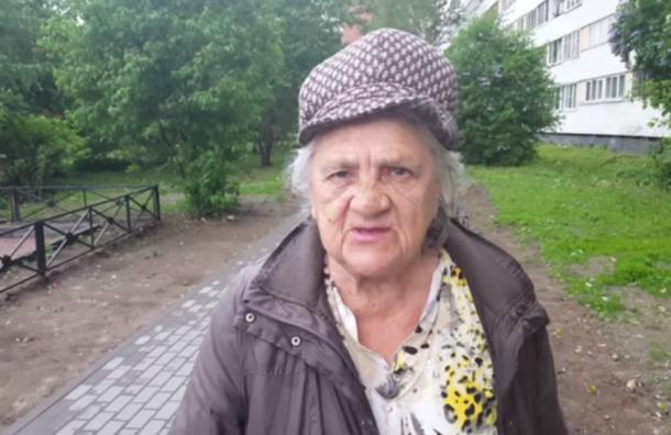 Продуктовые наборы раздавали петербуржцам, голосовавшим на участках Милонова и Гвоздова