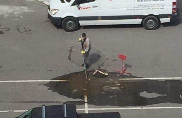 «Озеро» с нечистотами разлилось у бизнес-центра «Желтый угол» в Петербурге