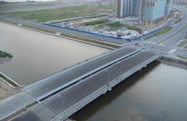 Власти согласовали митинг против моста Кадырова в Петербурге