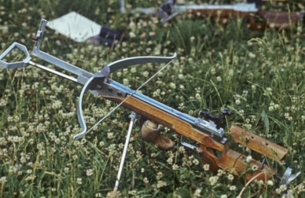Псковский «Вильгельм Телль» застрелил своего гостя из арбалета