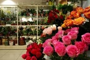 Неизвестный с электрошокером обчистил цветочный магазин на Наставников