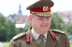 Эстония собирается сдерживать Россию «лежачим полицейским»  с шипами