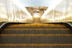 Ребенку на станции «Проспект Просвещения» зажало ногу на эскалаторе