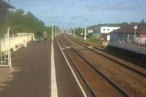 Очевидцы: Электричка сбила мужчину на станции «Сосновая поляна»
