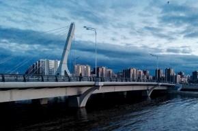 Петицию против моста Кадырова подписали более ста тысяч человек
