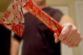 Гражданин Молдавии в Подмосковье с топором напал на трех членов семьи