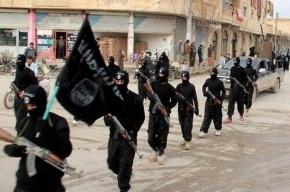 Близнецы убили мать за запрет вступить в ИГИЛ