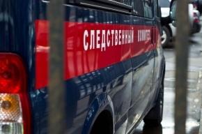 Пенсионер в Купчино выпал с третьего этажа