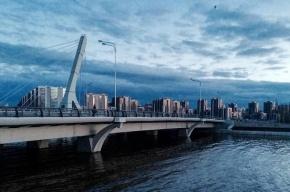 Петиция против моста Кадырова собрала 60 тысяч подписей