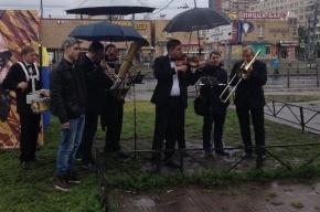 Математика Перельмана с юбилеем поздравил оркестр