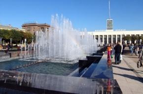 Мужчина, пытавшийся утопиться в фонтане, умер в больнице