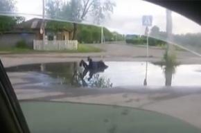 СМИ: В Приамурье инвалида заставили купаться в луже за деньги
