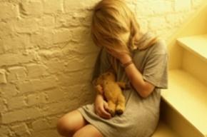 Житель Ленобласти совратил девочку-подростка из Петергофа