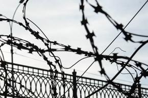 Беременную женщину изнасиловал неизвестный на проспекте Косыгина