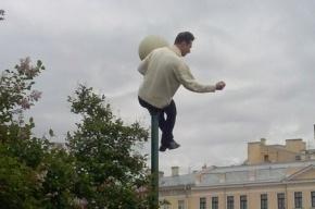 Защитник моста Кадырова залез на столб на митинге в Петербурге