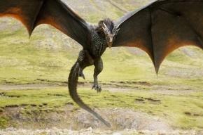 Следующий сезон «Игры престолов» сократят на три серии