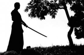 «Самурай» угрожал полицейскому катаной в Петербурге