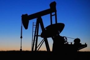 Трейдеры в панике: нефть обвалилась на фоне референдума в Великобритании