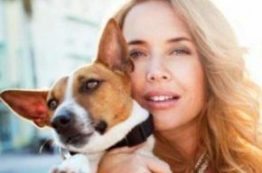 Собаку Жанны Фриске насмерть сбил автомобиль