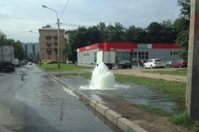 Фонтан забил на проспекте Большевиков