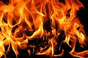 Спасатели тушили пожар на предприятии на улице Коммуны