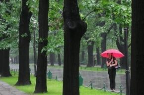 Грозы и ураганный ветер приближаются к Петербургу